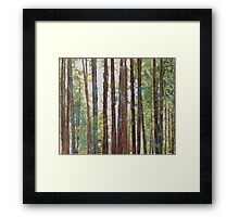 Hiking with the dogs Framed Print