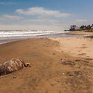 Death on the Beach by Paul Wolf