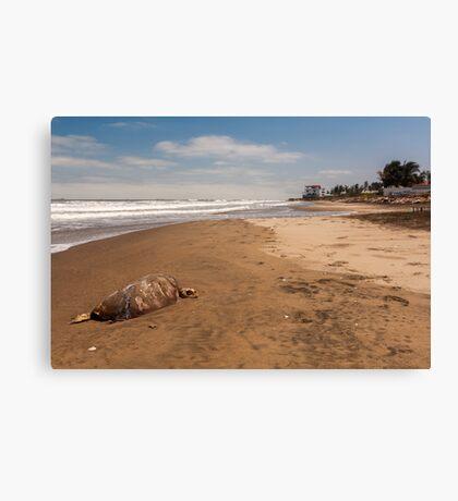 Death on the Beach Canvas Print