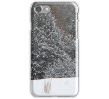 Rural Snow iPhone Case/Skin