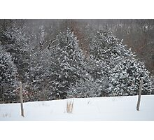 Rural Snow Photographic Print