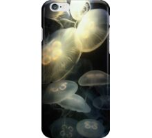 Jellyfish Darkness to Light iPhone Case/Skin