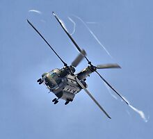 Vortex - The Chinook Display - Dunsfold 2013 by Colin  Williams Photography