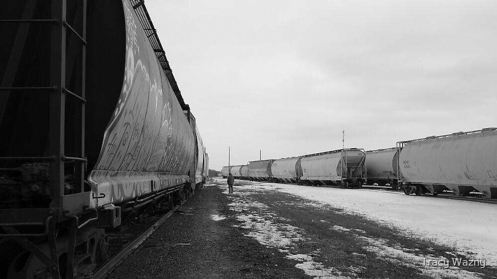 Train Yard In Febuary. by Tracy Wazny