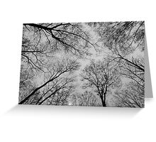 Spring Trees - Black and White 3 Greeting Card