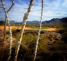 Desert Golf 2 by mcnally22