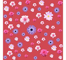 Mixture Roses and Other Flowers Photographic Print