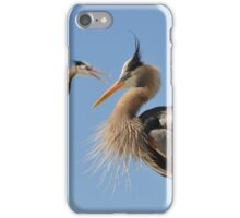 Blue herons, competing iPhone Case/Skin