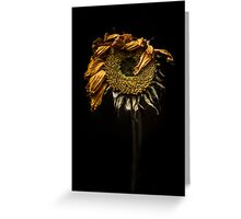 A sunflower feeling under the weather Greeting Card