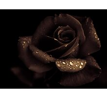 Nutella rose with agave syrup Photographic Print