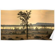 Foggy Morning on the Billings Stretch Poster