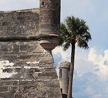 Castillo de San Marcos by Bob Hardy