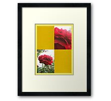 Red Rose with Light 1 Blank Q7F0 Framed Print