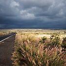 Saddle Road #1 by Ellen Cotton