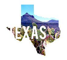 Texas - Big Bend by Daogreer Earth Works