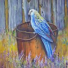 Bird on a bucket  by owen  pointon
