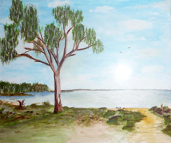 Lake Hindmarsh by David Fraser