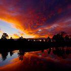 Liquid Sunset by kurrawinya