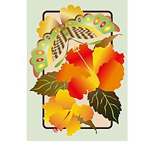 Pretty Green Autumn Butterfly Orange Hibiscus Flowers Photographic Print