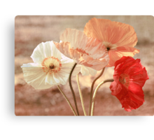 Poppies in Red, White & Peach Canvas Print