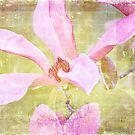 Sweet Susan by Linda Lees