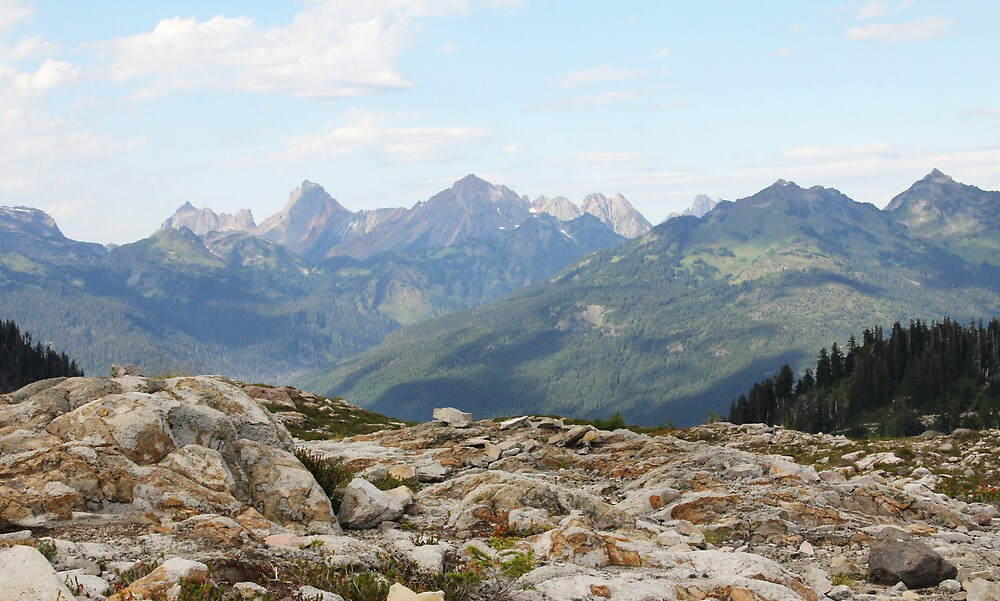 Shadowed Mountaintops by Tracy Friesen