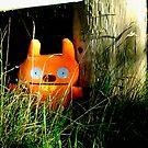 Hiding. by Paul Rees-Jones