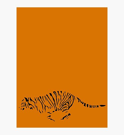 Tiger Outline Photographic Print