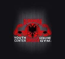 Albanian Eagles Youth Center Genuine Gym by regpower23