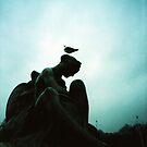 Bird Hair Day - Lomo by chylng