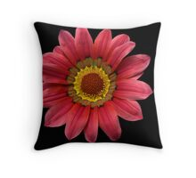 Windmill ! Throw Pillow