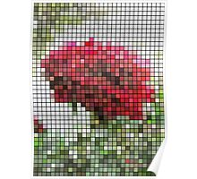 Red Rose with Light 1 Mosaic Poster