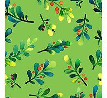 - Branch pattern - Photographic Print
