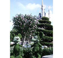 Mickey & Minnie Mouse in Disneyland Photographic Print