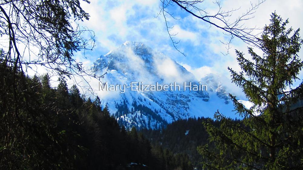 Austerities of Austrian Alps by M-EK