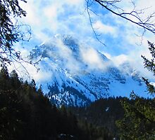 Austerities of Austrian Alps by M-EK