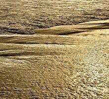 Golden Sand Sunset by Kasia-D