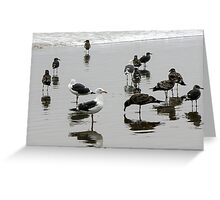 BIRD REFLECTION 2 Greeting Card