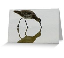 BIRD REFLECTION 4 Greeting Card