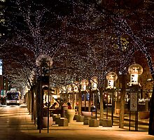 16th Street Mall in Denver, Colorado at Christmas time. by pjphoto181