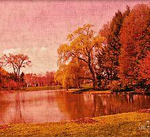 Glory of the Autumn Light by Carol F. Austin