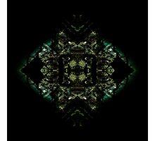 Void Bloom Photographic Print