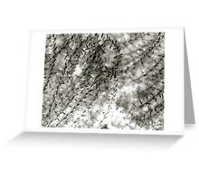 Wisps Greeting Card
