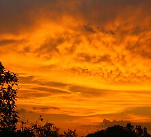 Kerrville Sunset by arr333