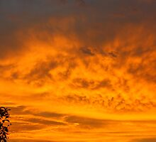 Kerrville Sunset 2 by arr333
