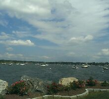 Summer day in Wickford harbor by Deanna Correia