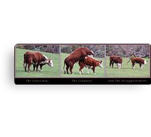 The Courtship, The Conquest and The Disappointment. Canvas Print