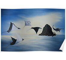 Flying Mantas Poster