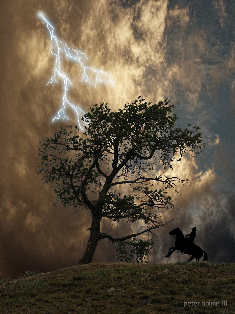 3009 by peter holme III
