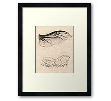 Rhinoceros Beetle Detail Framed Print